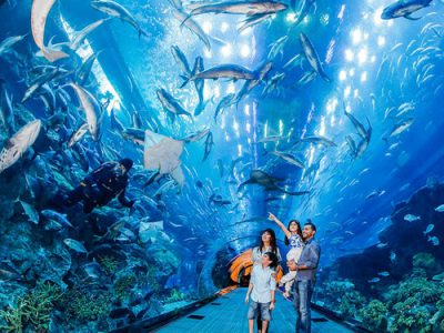 Dubai-Aquarium-and-Underwater-Zoo-1